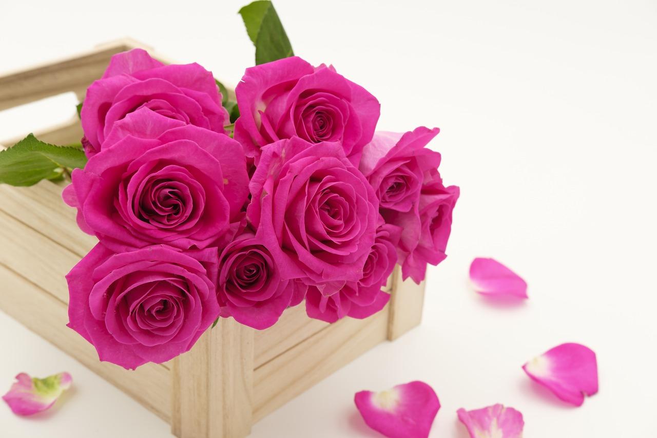 Enviar Flores Para Un Hombre Es Correcto Flores Elegantes