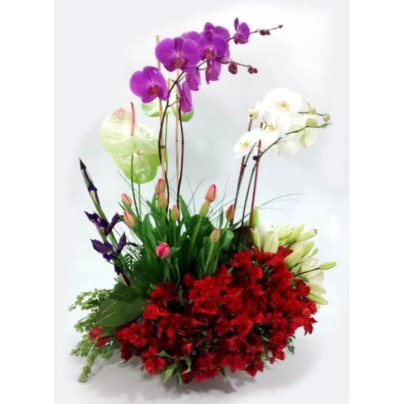 Floral 027