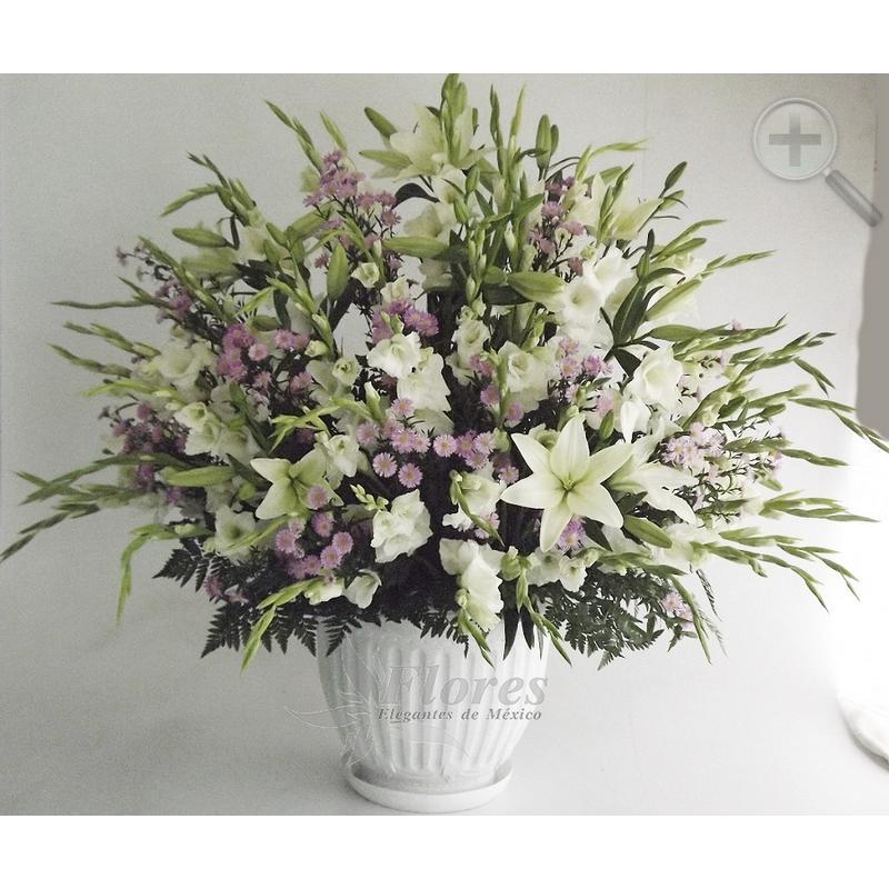 Floral 178