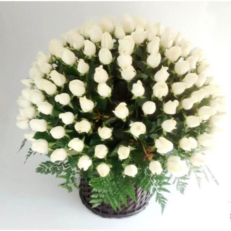 Floral 040